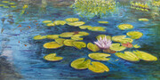 "Waterlilies 18"" x 36""   (oil)"